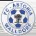 경기 - FC Astoria Walldorf II vs SV Oberachern