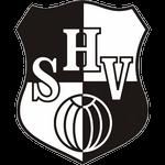 Heider SV Badge