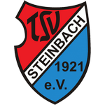 TSV Steinbach Badge