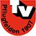 TV Pflugfelden Stats