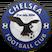 Berekum Chelsea FC logo