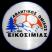 AO Eikosimia Logo
