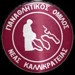 Nea Kallikrateia FC