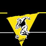 Tolle Utánpótlásnevelő FC Szekszárd