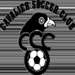 Cavalier SC Badge