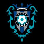 Avispa Fukuoka Badge