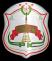 FK Ruzaevka Stats