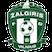 VMFD Žalgiris Vilnius Logo
