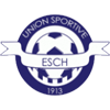 US Esch Badge