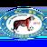 Lafia Club de Bamako Logo