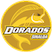 CSyD Dorados de Sinaloa Stats