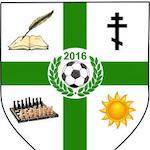 Academia de Fotbal Viitorul