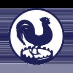 Haagsche Voetbal en Cricket Vereniging Quick