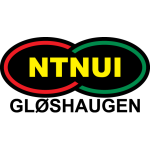 NTNUI Fotball Badge