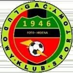 LKS Foto Higiena Gac Olawa logo