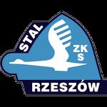 ZKS Stal Rzeszów - 2. Liga Stats