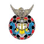GD Fontinhas Badge