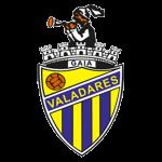 Valadares Gaia FC Badge