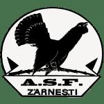 ASC Olimpic Zărneşti