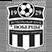 FK Lyubertsy Stats