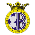 FK Metallurg Vidnoye Badge