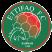 Al Ittifaq Under 19 Stats