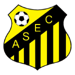 ASEC Ndiambour Badge