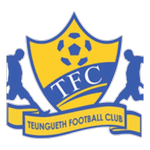 Card Stats for Teungueth FC