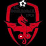 FK Voždovac Badge