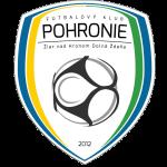 FK Pohronie Žiar nad Hronom Dolná Ždaňa Badge