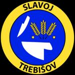 FK Slavoj Trebišov Badge