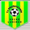 TJ Družstevník Veľké Ludince logo