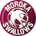 Moroka Swallows FC Stats