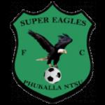 Super Eagles FC