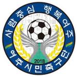 Yeoju Sejong FC
