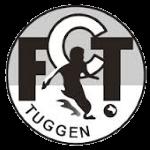 FC Tuggen - 1. Liga Promotion Stats