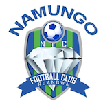 Card Stats for Namungo FC