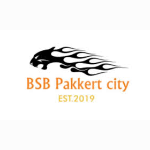 BSB Pakkert City