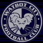 Wat Bot City F.C.