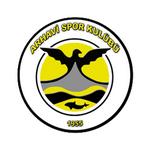 Arhavi Spor Kulübü