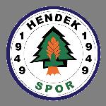 Hendek Spor Stats