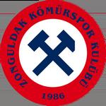 Zonguldak Kömür Spor Kulübü