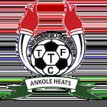Terrazzo and Tiles FC