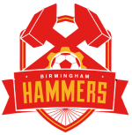 Card Stats for Birmingham Hammers FC