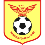 DPM Nam Dinh FC Logo
