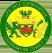Caernarfon Town FC Stats
