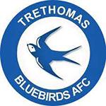 Trethomas Bluebirds FC