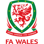 Wales National Team Badge