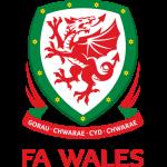 Wales U21 Stats