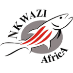 Nkwazi FC